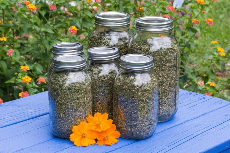 Herbs For Chickens, recipe for mixing into chicken feed from Home on the Roost blog