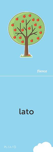 Lato #CardFly #flience #time #polish #education #flashcard #language