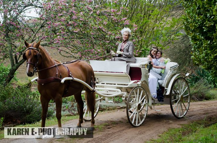 Crab Apple Horse and Carriage