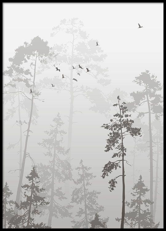 Foggy forest, poster in de groep Posters / Afmetingen / 50x70cm bij Desenio AB (8352)