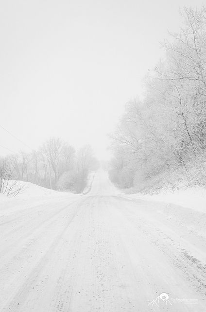Snowy road :) I LOVE it. Can't wait for snow :) It's always so peaceful, and a great reminder of being made new and fresh starts.