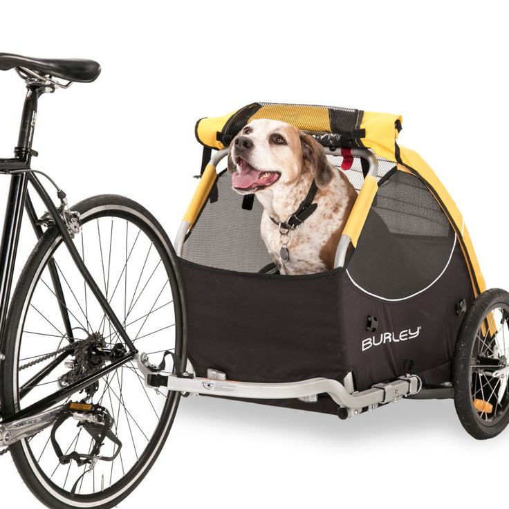 Burley Design Tail Wagon Dog Bike Trailer. Must have for any bike tour with a dog.