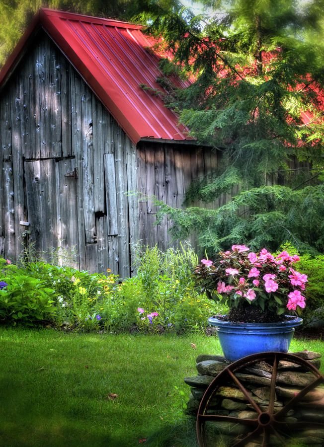 This is what I want to do with my father-in-laws old shed, but first I have to get it to my place!  It would look great with all our flowers!