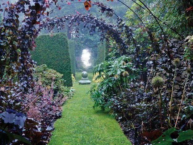 The Sakonnet Garden in Little Compton, Rhode Island,Weeping Beech, Black Swan, Green, Beech Black, Black Border, Gardens Design, Gardens Boards, Border Gardens, Black Weeping
