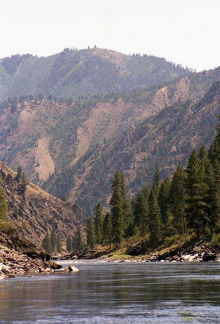 Salmon River, Idaho - The River of No Return Beautiful area of Idaho where they now ruthlessly hunt wolves.