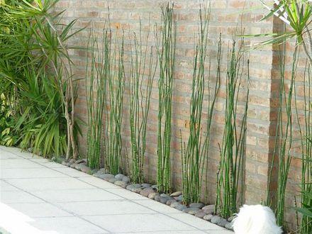 17 mejores im genes sobre jardin en pinterest plantas y - Que es paisajismo ...