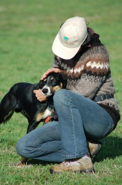 Otways Conservation Dogs - Buzz & Jill