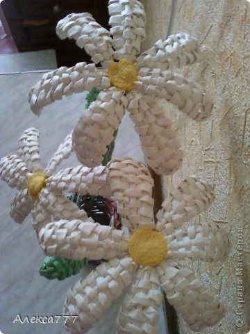 Мастер-класс Плетение Мои ромашечки Бумага газетная Бумага журнальная Вата Клей Нитки фото 1