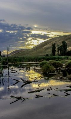 In the Hawkes Bay of #NewZealand one summers evening...