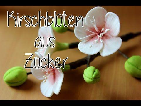 Kirschblüten aus Blütenpaste/ Gumpaste cherry blossoms- Tutorial /Zucker/Fondant/ Tortendekoration - YouTube