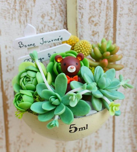 CLAY SUCCULENT PLANT MADE BY www.facebook.com/marugo520