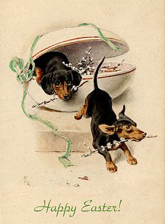 Two cute dachshunds find some flowers. (Vintage Easter postard)
