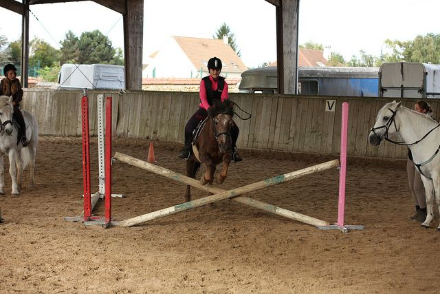 Equitation, horse-riding IMG_5190 by forgeron, via Flickr