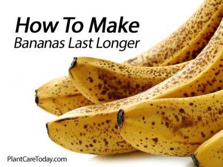 How To Make Bananas Last Longer