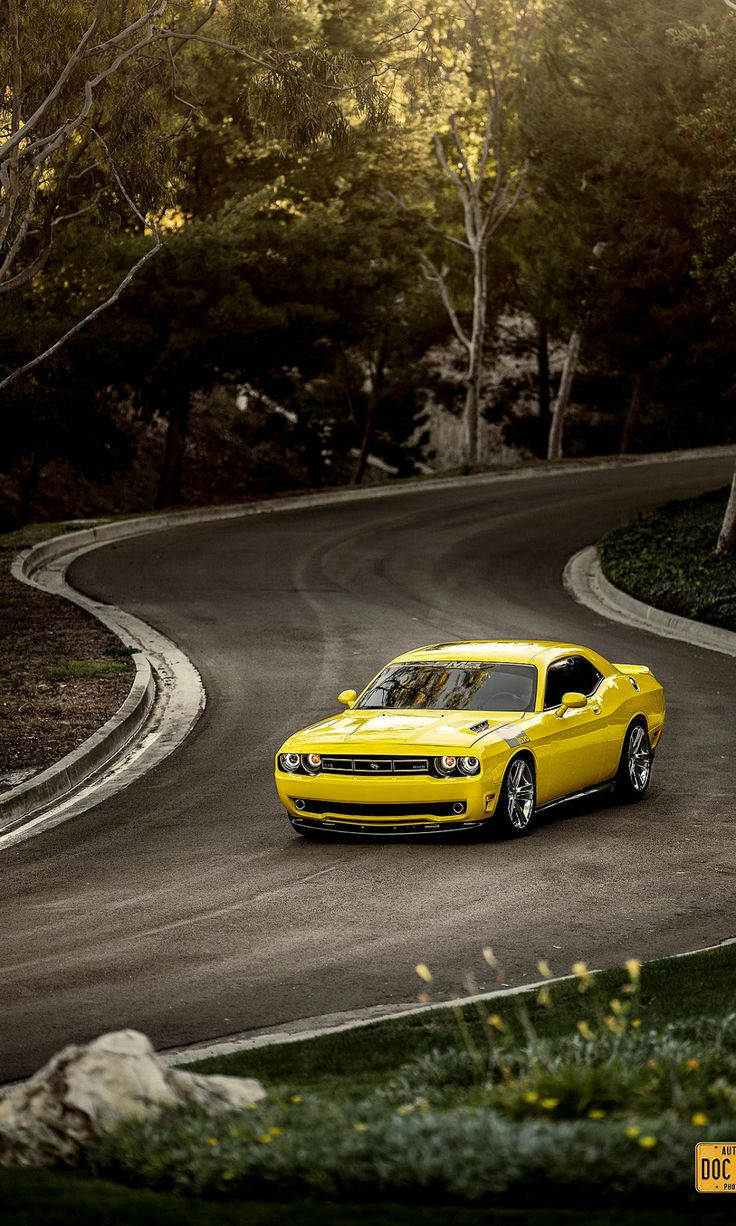 h-o-t-cars:    Dodge Challenger Saleen 570