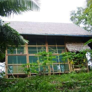 Workaway in Peru. Help on Eco farm and in the Guest House of private Jungle Reserve in the Amazon jungle near Iquitos, Peru