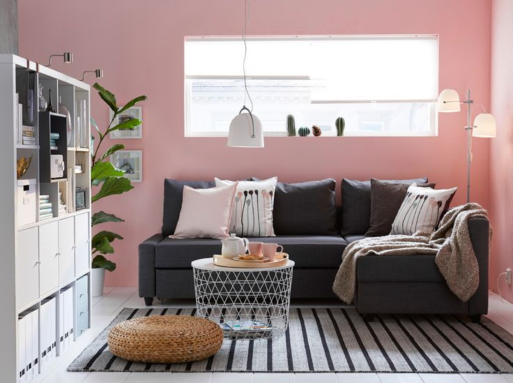 Living room with dark gray sofa-bed, pink walls and a striped rug. - sotrage and sleeper sofa - LOFT