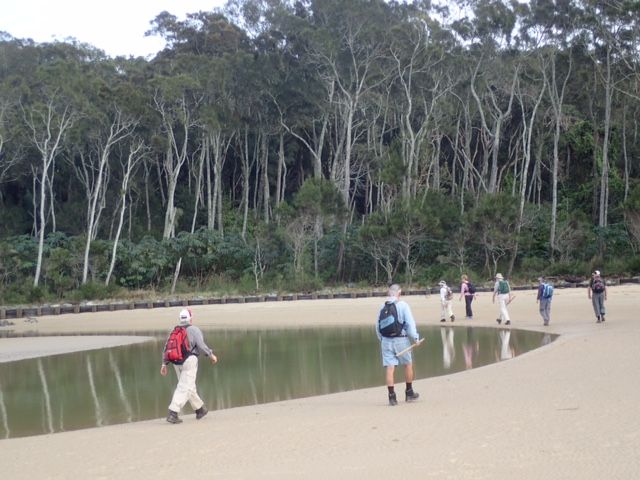 A beautiful day for a bushwalk with the Kyeewa Bushwalkers in the Nambucca Valley and surrounds.