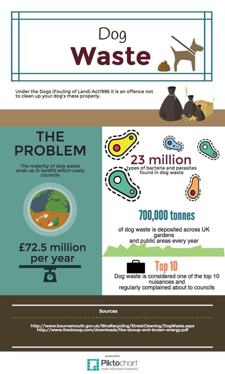 Infographic about dog waste #dog #waste #doggy #puppy #facts #stats