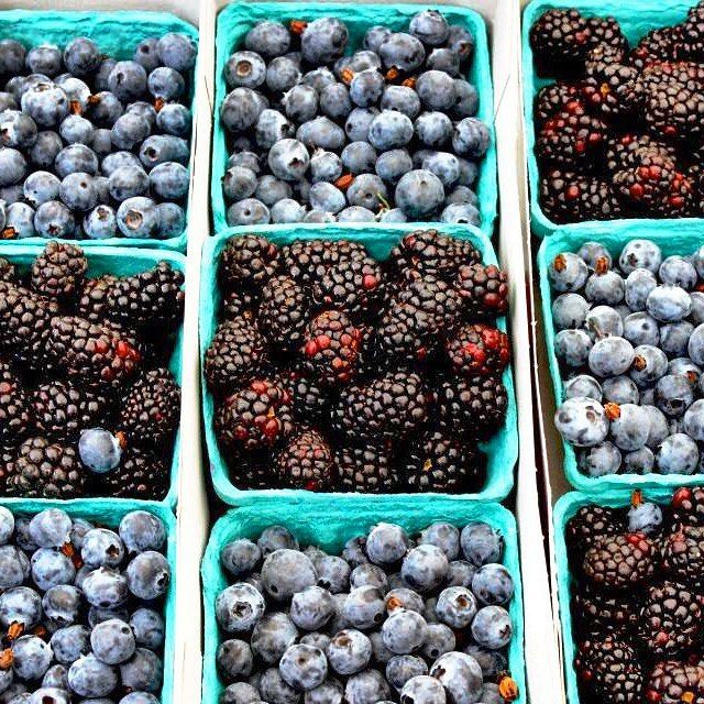 #blueberries for #summer! Another wonderful Santa Monica Farmers Market find!
