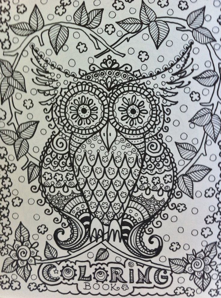 OWLS Coloring Book For You To Have Some Fun And Be The Artist Original Cute Owl