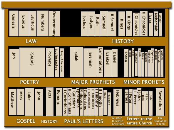 The Bible is a library ... we included an image similar to this one in the book to help readers visualize how the books of the Bible are categorized and arranged, from Genesis to Revelation.