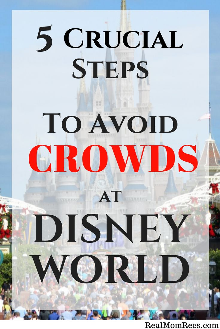 Planning the ultimate Disney vacation but afraid of running into huge crowds? Follow these 5 steps to avoid crowds at Disney World! Less lines, more magic!