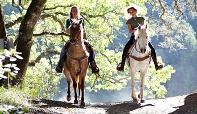 $25 -- Horseback Ride on the Trans-Canada Trail, Reg. $40