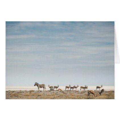 Plains Zebras   Equus Burchellii Card - plain gifts style diy cyo