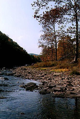 ✯ Mountain river in West Virginia