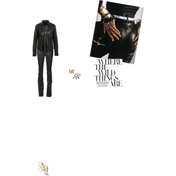 Bez tytułu #107 by izabelmaz on Polyvore featuring moda, Helmut Lang, J Brand, Sergio Rossi, Givenchy and Blue Nile