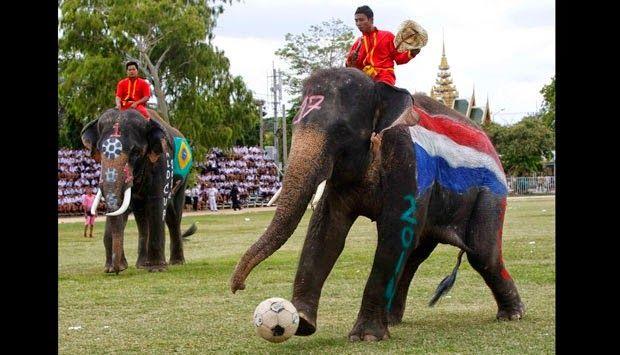 Negeri Humor: Sepak Bola Gajah