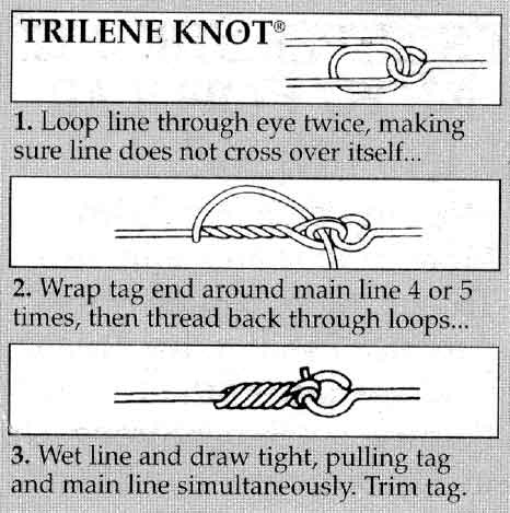 How to tie a fishing line on a hook pics google search for How to tie a hook on a fishing line