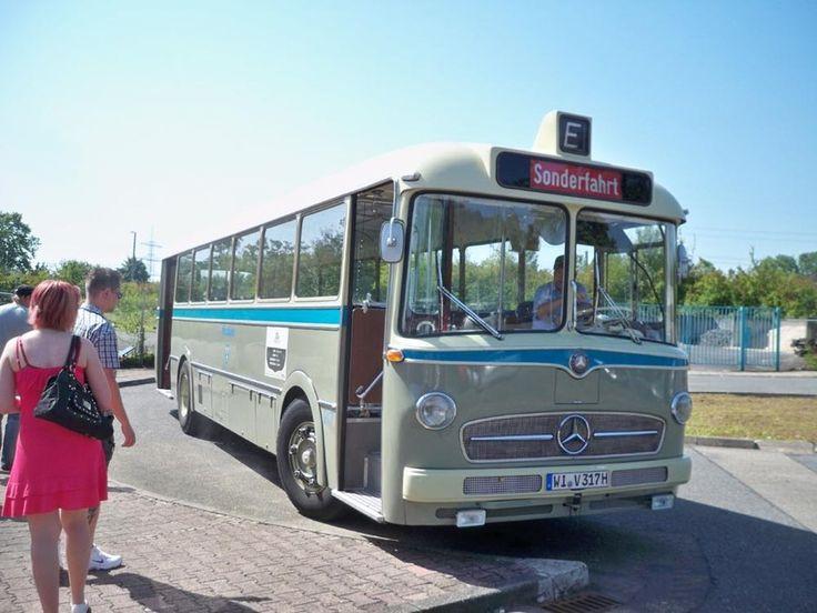 Mercedes benz bus mercedes benz bus pinterest for Mercedes benz charter bus