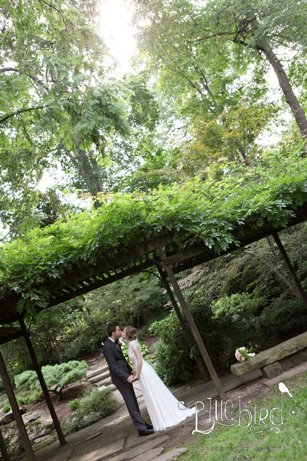 outdoor wedding ceremony sites in akron ohio%0A Bride and Groom at Cleveland Botanical Gardens Photography by Bluebird  Photography