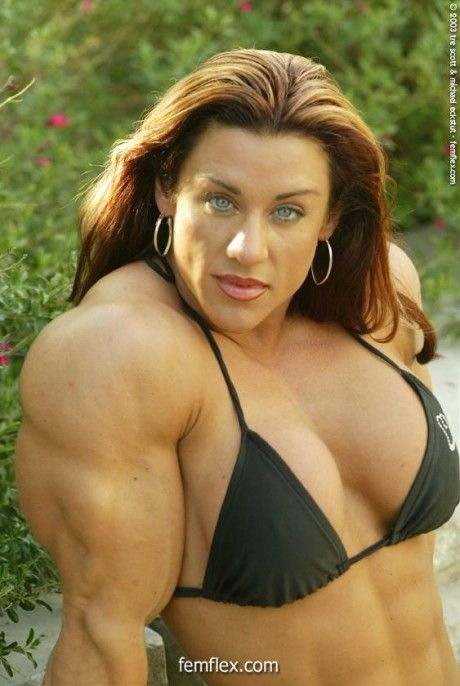 203 best images about Bodybuilding on Pinterest | Arnold