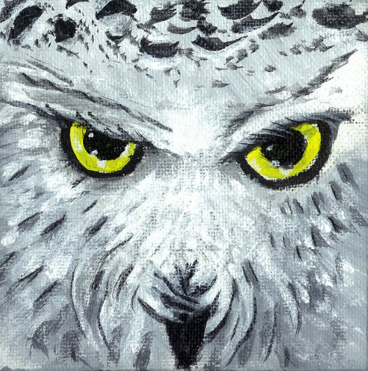 """""""Sneugle"""" (Snowy Owl) - 4x4 inch acrylic paint on canvas - SOLD"""