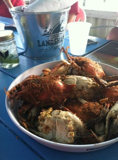 Maryland steamed crabs with tons of Old Bay