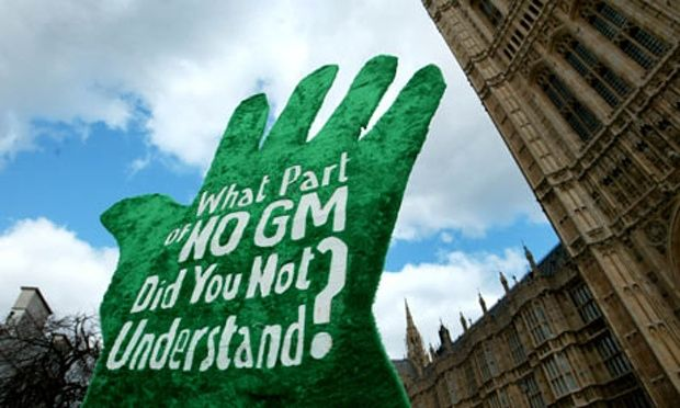 A total of 19 EU countries have now stated that they will not let their agricultural systems be damaged by unnecessary and harmful GM crops that were designed by the Biotech industry, led by Monsanto, to sell more herbicides. http://sustainablepulse.com/2015/10/04/gm-crop-bans-confirmed-in-19-eu-countries/#.VhKpMHpVhBd
