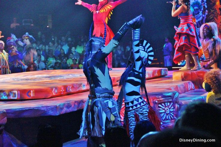 zebra dancers, festival of the lion king, harambe theatre, harambe, africa, animal kingdom, walt disney world