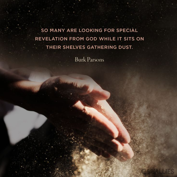 """""""So many are looking for special revelation from God while it sits on their shelves gathering dust."""" (Burk Parsons)"""