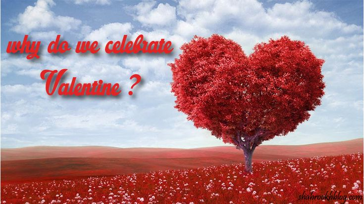February 6, 2018 So Every couple here to know why can we celebrate valentines day and how did valentines day begin? so here are some crazy facts about valentine day.