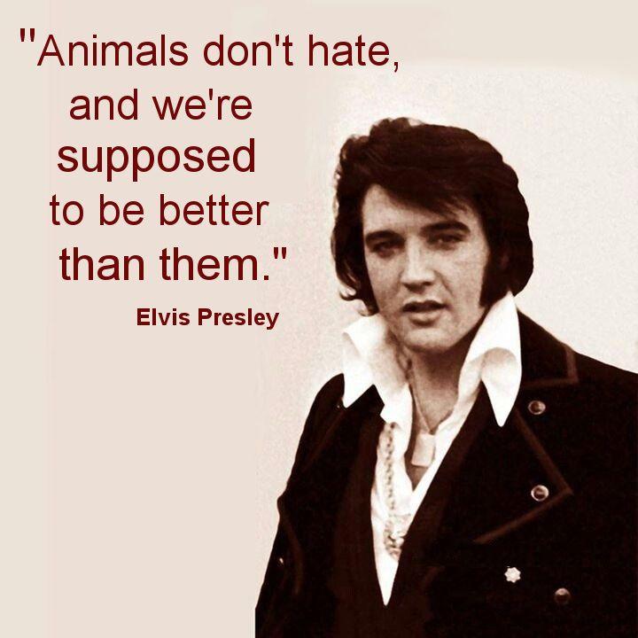 Priscilla Presley Blames Herself For Elvis Presley's ...