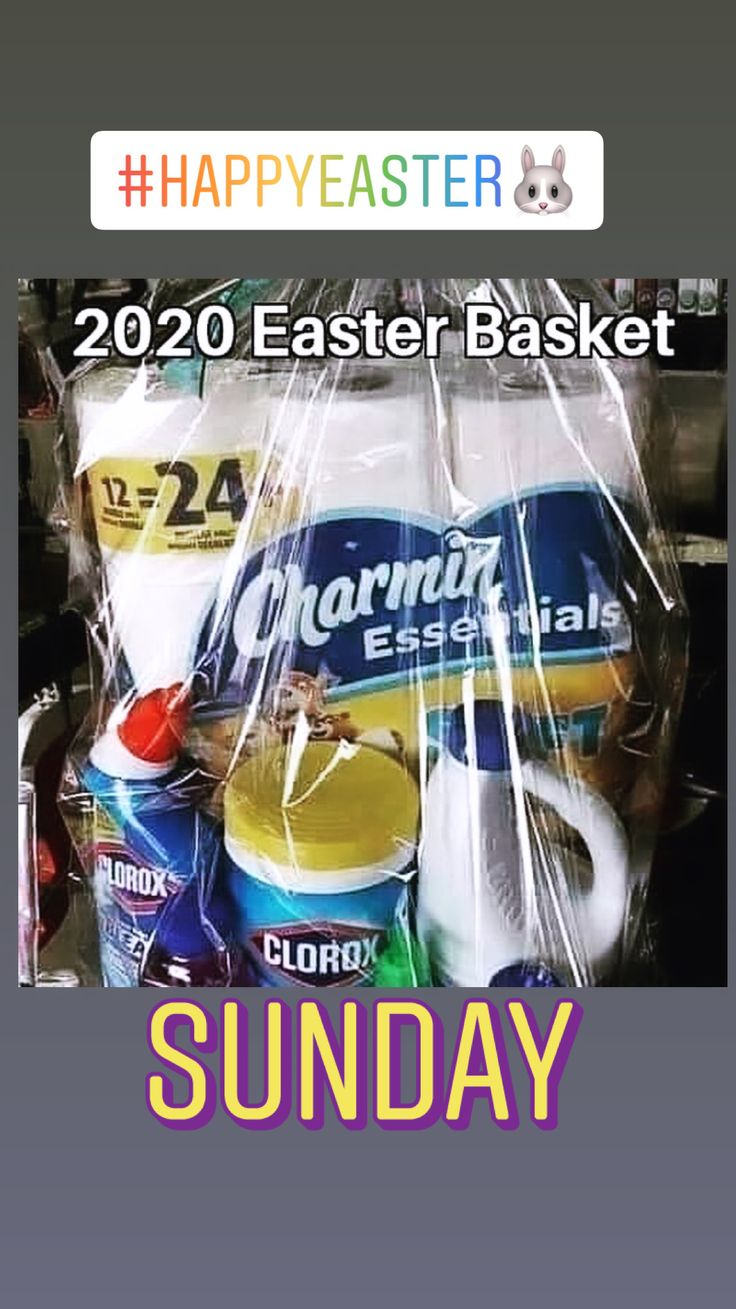 Happy Easter funny Easter 🐣 🐰🧻🧻🧻 in 2020 Easter, Clorox