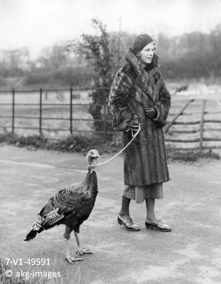 7-V1-49591 Woman walking a turkey on a lead akg-images / Voller Ernst