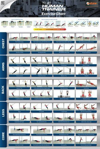 The Human Trainer - Poster   Suspension Gym Workout Poster Exercises   Bodyweight Workouts by The Human Trainer, http://www.amazon.com/dp/B00AZ9U588/ref=cm_sw_r_pi_dp_Vixdsb1NFETG5