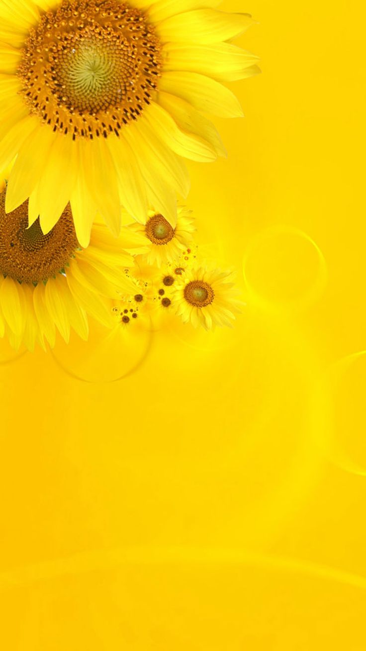 1000 ideas about iphone wallpaper yellow on pinterest