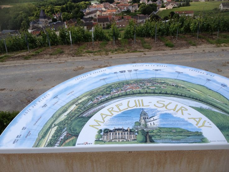 Views of the vines above the pretty village of Mareuil-sur-Ay