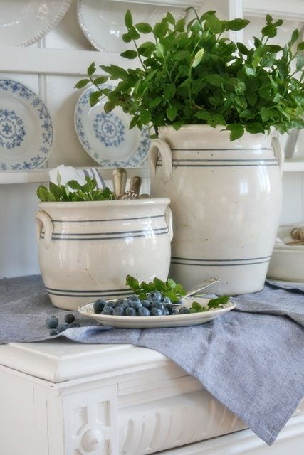 I love the herbs in these two blue and white crockery jugs.  So crisp and country-like.