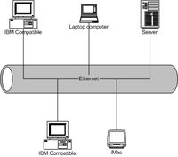 local area network (LAN)-a computer network that interconnects computers in a limited area such as a home, school, computer laboratory, or office building using network media.
